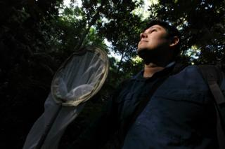 Pedro Dias on a hunt for crickets in the Tijuca National Forest in Rio de Janeiro