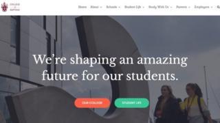 A screen shot of the fake university website