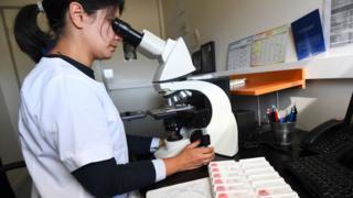 اختبارات على سرطان الثدي