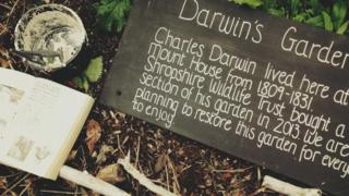 A sign in the garden
