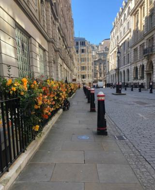 Street lined with flower boxes