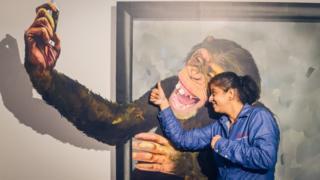 El chimpancé tomándose un selfie
