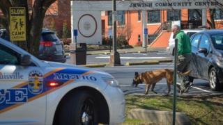 صورة لسيارة شرطة وكلب بوليسي