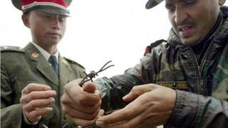 भारत-चीन सीमा पर दोनों देशों के सैनिक
