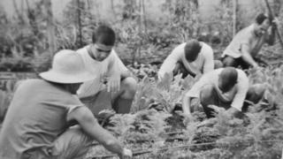 Adolescentes trabalhando em horta em unidade de internação no início do século 20