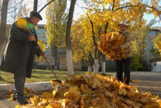 Штраф за сжигание листьев колеблется от 340 до 1700 гривен