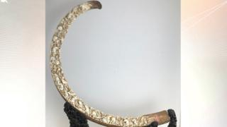 10,000-year-old woolly mammoth tusk.