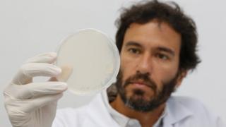 O cientista Júlio César Batista Ferreira em laboratório