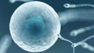 Computerised image of a sperm entering an egg