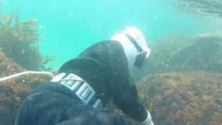 Female diver in the water in Mie, Japan