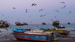 درگیری سپاه و شیلات بر سر صید ترال در آبهای ایران؛ معیشت صیادان محلی در خطر است