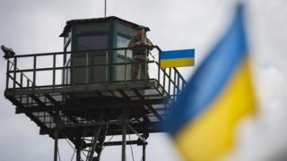 Украина, гражданство, Госдума