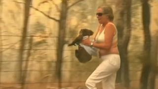 托妮·多爾蒂抱著著火考拉跑出叢林(19/11/2019)