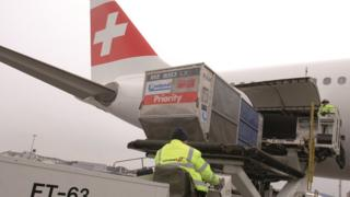 Swissport said the jobs will include positions in passenger check-in as well as baggage and freight handling