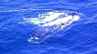 사진은 해상초계기에서 촬영된 목선 모습