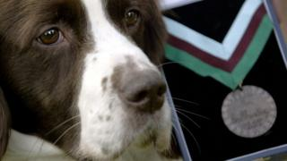 Police dog wey get di award for 2003