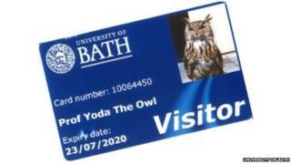 Yoda the Eagle Owl's new library card
