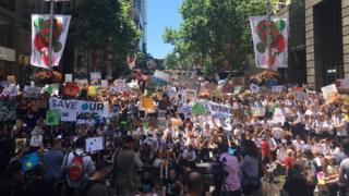 Hundreds of school students protest in Sydney with signs and banners urging climate change action