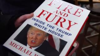 Di Fire and Fury book
