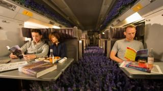 A Eurostar carriage converted into a Lavender field