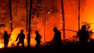 Incendio en Portugal en junio de 2017