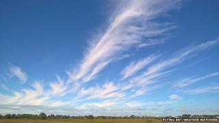 A sky full of mares' tails