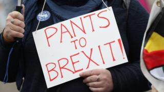 Anti-Brexit protester outside Lib Dem conference