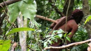 亞馬遜孤獨土著身影(巴西FUNAI資料圖片)