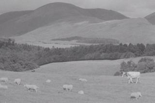 Archive film image