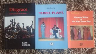 Bate Bissong books
