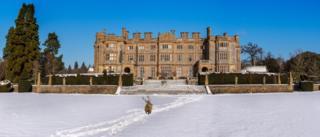 Deer in snow at Eynsham Hall