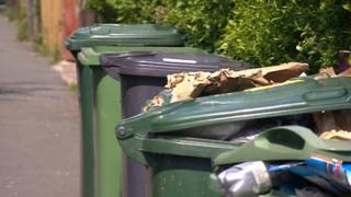 Green bins in Kirklees