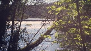River Clyde at Bothwell