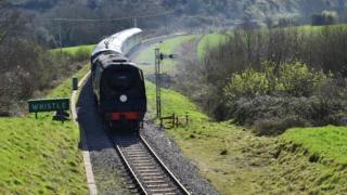 Train puling into a rural station