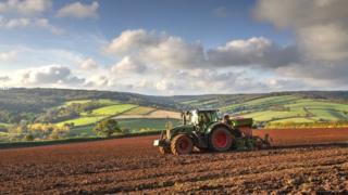 A tractor in a field in Ashcombe in South Devon
