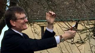 A graft is taken from Sir Isaac Newton's apple tree at Woolsthorpe Manor, for the University of Lincoln