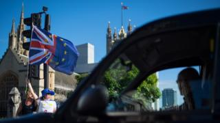 Brexit protesters at Westminster