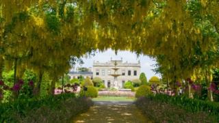 A tunnel of plants in front of Brodsworth Hall