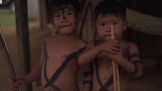 سكان الأمازون الأصليون من الانقراض لماذا يخشى