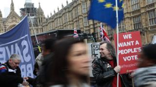 A People's Vote campaigner outside Parliament