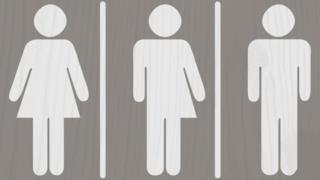 Female, trans and male graphic