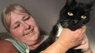 Missing cat Quincey back with family after 12 years