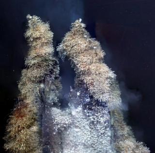 """最近发现的南极海域几处热液喷口,人们发现了大量的""""霍夫蟹"""""""