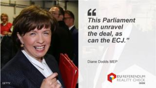 "Diane Dodds MEP saying: ""This Parliament can unravel the deal, as can the ECJ."""