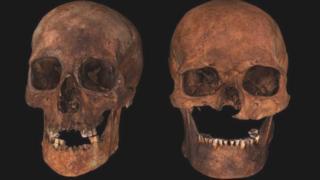 Visualisation of skulls found at Portmahomack