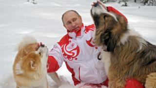 """Russin President Vladimir Putin as he plays with his dogs """"Buffy"""" (R) and """"Yume"""