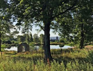 Larbert Loch