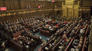 The House of Lords chamber during a debate