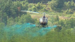 Helicopter spraying food dye