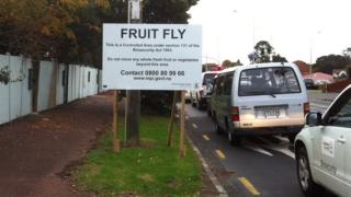 A sign marking the fruit fly control area